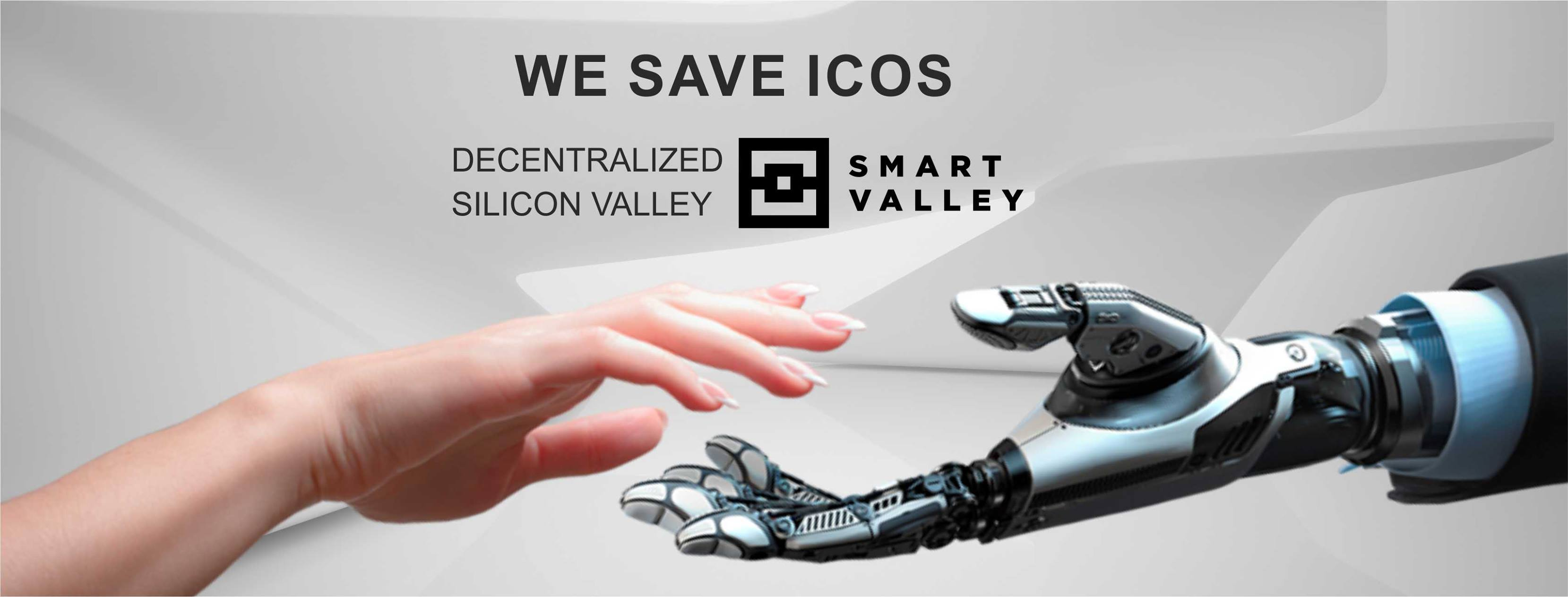 Image result for smart valley ico